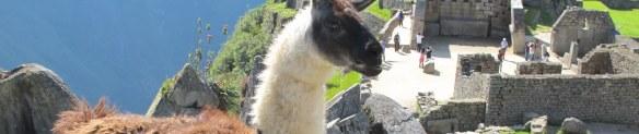 Trip to Mach Picchu 2013-04-026