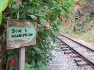 the last leg of the trip - hike to MachuPicchu 12 km along train tracks