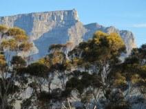 15-Cape Town 2013-06-29 016