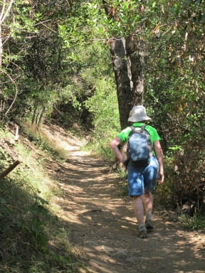 Mount Wilson Trail 2014-05-26 004 (768x1024)