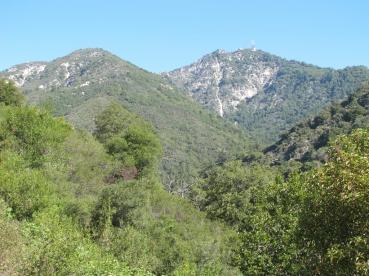 Mount Wilson Trail 2014-05-26 005 (1024x768)