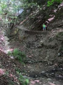 Mount Wilson Trail 2014-05-26 007 (768x1024)