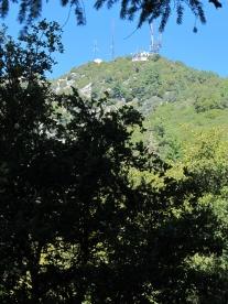 Mount Wilson Trail 2014-05-26 018 (768x1024)
